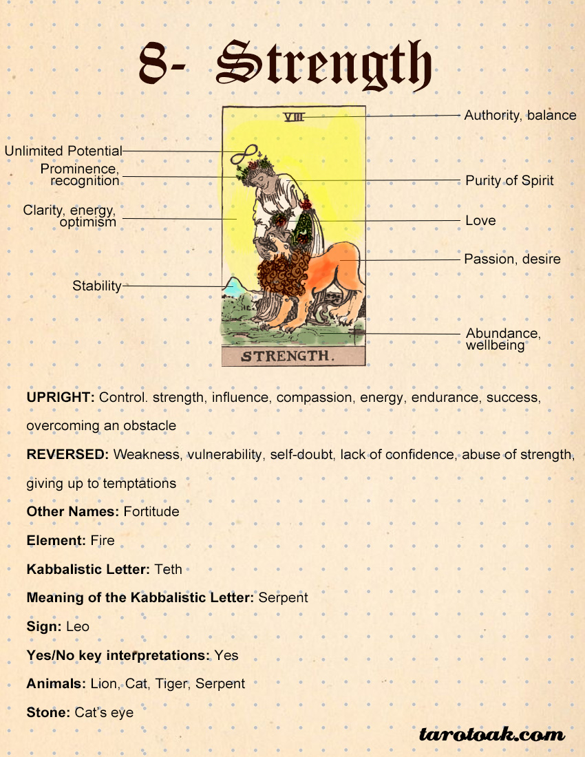 Strength Tarot Card Meanings, Keywords, Symbolism, Love, and Career