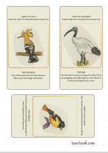 hoopoe, ibis and oriole oracle cards