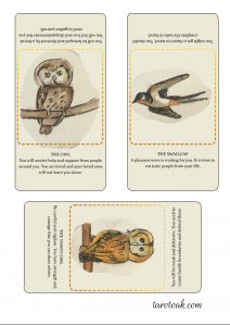 Owl, swallow and tawny owl, free printable oracle cards