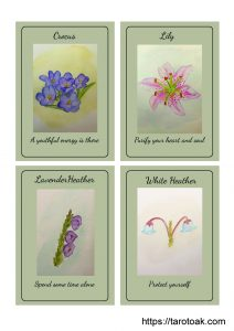 Flower Power Oracle Cards Page 2